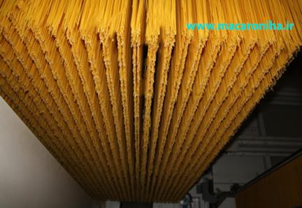 تولید انواع ماکارونی رشته ای اسپاگتی